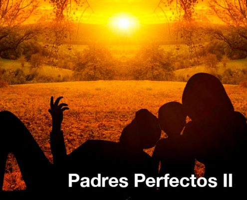 Padres perfectos II, by Joel Gallés